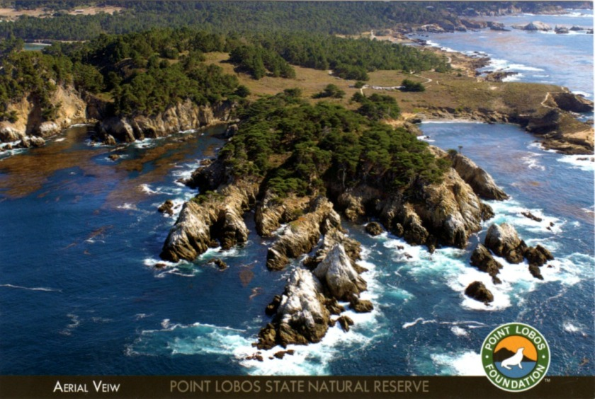 postcard a Point Lobos